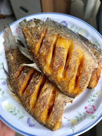 เมนูปลาสลิดทอดกรอบ